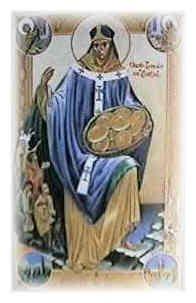 14 listopada Święty Wawrzyniec z Dublina, biskup Wawrzyniec, znany także jako Laurenty lub Lorcan O'Tuathail lub O'Toole, urodził się w Castledermot w Irlandii w 1128 roku. Jego matka nosiła panieńskie nazwisko O'Byrne, a ojciec nazywał się Murtagh O'Tuathail - oboje pochodzili z królewskich rodów. Celt imieniem Tuathail był w II wieku jednym ze znamienitszych królów Irlandii. Jednak w czasie, w którym urodził się Wawrzyniec, linia jego ojca nie rządziła już Irlandią. Chociaż jego ojciec posiadał wielu żołnierzy, służących, rozległe ziemie, a także zamek - był lennikiem Dermonta MacMurrougha, swojego zięcia (wyszła za niego siostra Wawrzyńca). Ten ostatni, aby zapewnić sobie wierność szlachcica, nakazał mu przekazanie Wawrzyńca jako zakładnika na swoim dworze. Tak też się stało. Dermont MacMurrough był człowiekiem postawnym, gwałtownym i budzącym strach wśród własnych poddanych. Nade wszystko zaś miłował wojnę. Wawrzyniec przebywał na jego dworze odkąd skończył 10 lat i przez jakiś czas spokojnie mieszkał w zamku Dermota - aż do czasu, gdy jego ojciec odmówił wykonania jakiegoś rozkazu. Wawrzyniec został wówczas zabrany w miejsce wyludnione i kamieniste - aby odpokutować nieposłuszeństwo ojca. Tam zamieszkał w rozpadającej się chatce, gdzie za jedynego towarzysza miał strażnika, a cała żywność mu dostarczana wystarczała ledwie na przetrwanie z dnia na dzień. Ubrań nie dostarczano mu wcale. Żył tak dwa lata, do czasu, kiedy ojciec pogróżkami wymusił zwrot chłopca. W sporze między ojcem Wawrzyńca a Dermontem głównym mediatorem był biskup Glendalough (to górska dolina w pobliżu Dublina, z opactwem z końca VI w). Do niego też wysłano chłopca, gdy wydostał się z rąk Dermonta. Tu zaczyna się zupełnie nowa era dla Wawrzyńca. Biskup zapoznał go z nauką chrześcijańską, a także cichym i pokornym życiem kontemplacyjnym. Wawrzyńcowi spodobało się ono wielce, ponieważ gdy ojciec przyjechał do niego z wizytą i w geście wdzięczności dla biskupa zaproponował, że poświęci jednego z 