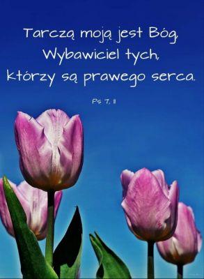 Nie nam, Panie, nie nam, lecz Twemu imieniu daj chwałę* za Twoją łaskawość i wierność! Czemu mają mówić poganie: «A gdzież jest ich Bóg?»* Nasz Bóg jest w niebie*; czyni wszystko, co zechce. Ps 115, 1-3