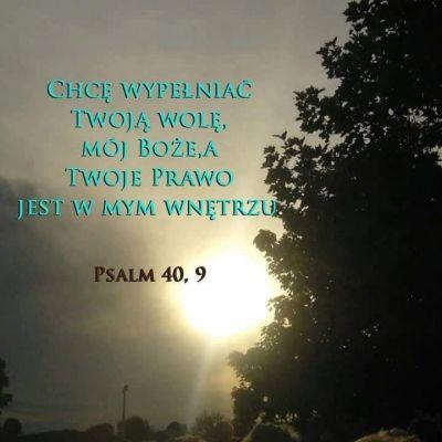 Z pewnością, aby człowiek mógł podjąć dzieło Jezusa w swoim sercu, w swoim życiu, trzeba, aby powtórnie się narodził. Nawrócił się w swoim sercu, zgodził się na to, aby ziarno, które wpadło w ziemię, obumarło, zaczęło obumierać. W ten sposób rozpoczyna się proces nawrócenia. W momencie, kiedy zostaje Słowo przyjęte z wiarą jak ziarno, które wpada na glebę naszej duszy – rozpoczyna się działanie Boga w nas, działanie Boga, które jest przyjęte przez nas, pod warunkiem, że to ziarno zostaje przyjęte. Co to oznacza w praktyce ? W praktyce oznacza odejście od bycia i życia według ducha świata, w znaczeniu grzechu tego świata. Oznacza to w praktyce zgodę na to, aby żyć według Ducha Chrystusowego. o. Józef Kozłowski SJ