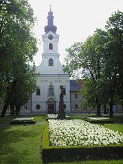 Katedra św. Teresy z Ávili w Bjelovarze (chor. Katedrala sv. Terezije Avilske u Bjelovaru) – główna świątynia rzymskokatolickiej Diecezji Bjelovar-Križevci w Chorwacji. Znajduje się w centrum miasta przy Trgu Eugena Kvaternika. Katedrą stała się w 2009, do tej pory był to kościół parafialny.  Na zaproszenie administracji wojskowej w Bjelovarze w 1761 przybyli bracia Hubert i Ignacij Diviš, z pochodzenia Czesi, członkowie kościelnego zakonu pijarów celu, w celach wychowawczych dzieci i młodzieży. Znaleźli w Bjelovarze małą kaplicę, później zdecydowali się na budowę kościoła.  Cegły zostały położone 10 kwietnia 1765 roku, a kamień węgielny poświęcony 12 maja tego samego roku. Kościół został poświęcony w 1770 roku, a pobłogosławiony 15 listopada 1772 w święto św. Teresy z Ávili. Zegar został zamontowany na wieży w 1774 roku. Biskup Zagrzebia Josip Galjuf konsekrował kościół 15 listopada 1775 roku. W kościele zmieści się 1000 osób. Poniżej kościoła znajdują się podziemne krypty dla grobów, ale zostało w nich pochowanych bardzo niewielu ludzi.  Kościół nosi imię św. Teresy, hiszpańskiej świętej i doktora Kościoła. Była patronem austriackiej cesarzowej Marii Teresy, która założyła Bjelovar w 1756 roku.  Trzęsienie ziemi w 1880 roku uszkodziło kościół i plebanię. Kościół został odnowiony przez architekta Hermanna Bolle w latach 1888-1896. Kościół został całkowicie przebudowany od wewnątrz.  Kościół św. Teresy z Ávili był kościołem parafialnym dla całego miasta Bjelovar i okolic do 1980 roku, kiedy powołano nową parafię św. Antoniego z Padwy i św. Anny.  Jeden pocisk uderzył w kościół i zabił trzy kobiety 29 września 1991 roku, podczas konfliktu zbrojnego w Bjelovarze między chorwackim wojskiem i Jugosłowiańska Armia Ludową. Komitet Poległych wzniósł tablicę pamiątkową na ścianie kancelarii parafialnej.  W dniu 5 grudnia 2009 roku papież Benedykt XVI ustanowił Diecezję Bjelovar-Križevci z pierwszym biskupem diecezji Vjekoslavem Huzjakiem i kościół stał się katedrą św. Teres