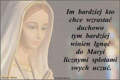 """Rozpoczął się piękny majowy miesiąc. Przyroda odżyła w swej pełni; pola i lasy wypełniły się wonią kwiatów, radosnym śpiewem ptaków oraz pieśniami na cześć Maryi. Tak! Maj to właśnie czas szczególnie poświęcony Najświętszej Maryi Pannie. Okres, w którym Kościół zaprasza nas do pogłębienia relacji z naszą Niebiańską Mateczką, umocnienia i odnowienia więzi miłości i dziecięcej ufności. Zapragnijmy zatem poznać Ją lepiej i pokochać gorąco; oddajmy się Jej opiekuńczym dłoniom, a Ona okryje nas płaszczem swej opieki.  Zapytajmy zatem ze św. Maksymilianem : """"Kim jesteś o Maryjo?"""" Odpowiedzmy równie prędko:     """" Jesteś naszą ukochaną Niepokalaną Matką!"""". Maryja jest Matką najczulszą, najtroskliwszą, najlepszą! Jako Bogarodzica, """"Pełna Łaski"""" Jedyna w sposób najdoskonalszy wypełniła w swym życiu Wolę Bożą i wraz ze swym Synem wyjednała nam łaskę odkupienia, ofiarując się z Nim za nas na drzewie krzyża. Tam też Jezus dał nam Ją za Matkę oraz ustanowił Niepokalaną Pośredniczką Wszystkich Łask, która w wielkiej hojności rozdziela owoce odkupienia. Jak naucza św. Maksymilian, wszelka łaska spływa na nas przez Jej Niepokalane dłonie z Najświętszego Serca Jezusa. Znając ten Jej wielki przywilej, nie możemy pozostać obojętni.  Widzimy, iż nabożeństwo do Maryi jest konieczne dla każdego katolika, niezbędne na drodze do naszego uświęcenia i zbawienia.    Któż więc zaprowadzi nas do Jezusa, jeśli nie Jego Matka? Ta która nosiła go w swym Łonie, Ta która go wychowała, Ta która była przy nim zawsze i najdoskonalej upodobniła się do naszego Zbawiciela. Tylko Maryja! Ona jest drogą łatwą, krótką, doskonałą i pewną, która prowadzi prosto do Jezusa jak naucza św. Ludwik Maria Grignon de Montfort. """"Błogosławiony ten, kto mnie słucha, kto co dzień u drzwi moich czeka, by czuwać u progu mej bramy, bo kto mnie znajdzie, ten znajdzie życie i uzyska łaskę u Pana"""" (Prz 8, 30-35). Tymi słowami z księgi przysłów, Sam Duch Święty wskazuje na Maryję i zaprasza nas, na tą słodką drogę do nieba. Nie z"""